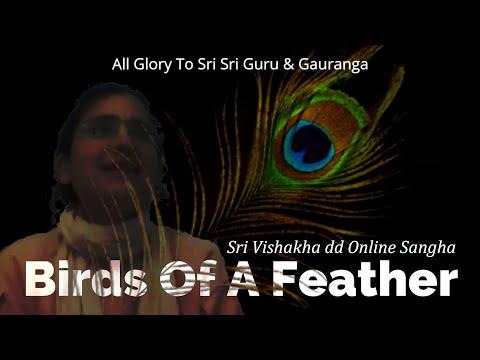 Birds Of A Feather   –   Sriyukta Vishakha dd  –