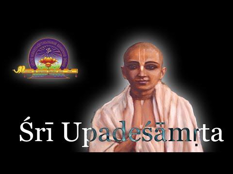 Śrī Upadeśāmṛta (Chapt 10 further continued)